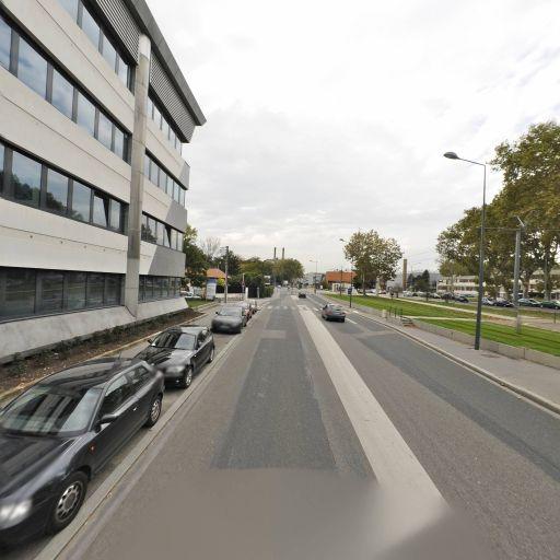Ansys France - Conseil, services et maintenance informatique - Villeurbanne