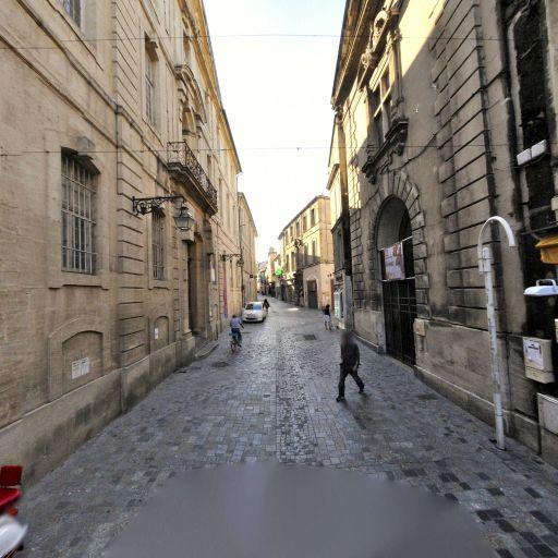 Muséon Arlaten - Musée - Arles
