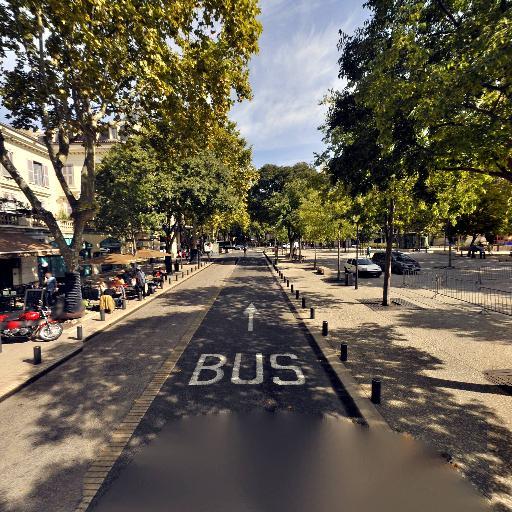 Brasserie le Palace Snc - Café bar - Nîmes
